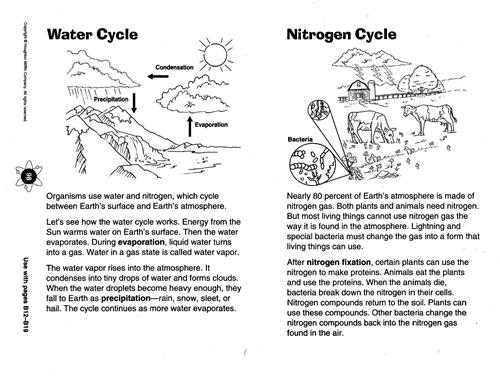 Zola D Science Chapter 8 Diagram of the Water Cycle – Science Worksheets for Middle School
