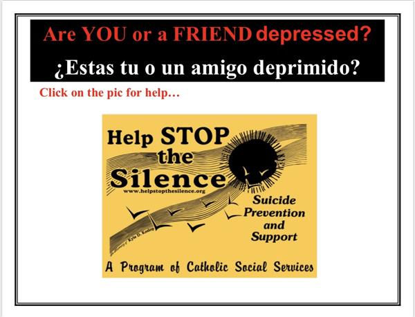 Help Stop the Silence